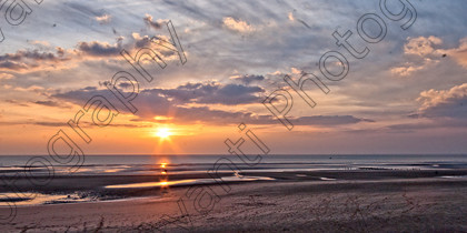 Avanti-Photography-708 